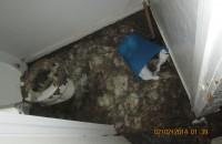 sewage backup Westchester NY