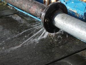 Sewage Backup Ossining