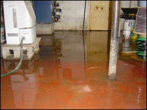 Water Damage Millwood