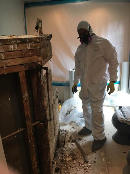 A Technician Conducting Water Damage and Mold Removal