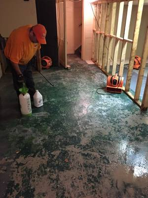 Professional Flood Cleanup in a Flooded Basement