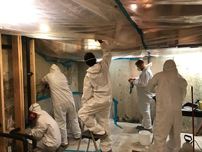 Our Team Conducting Water and Mold Removal Services